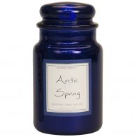 Village Candle Arctic Spring Metallic Large Candle